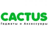 Магазин Cactus