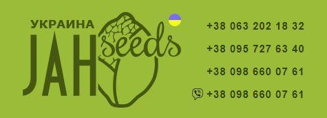 jahseeds.com