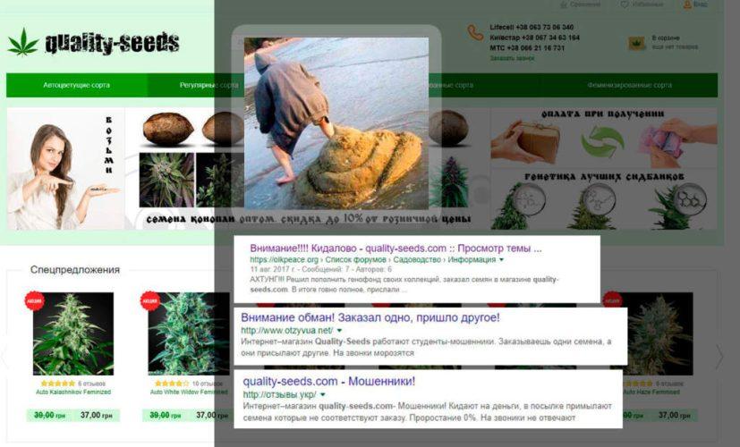 quality-seeds.com отзывы